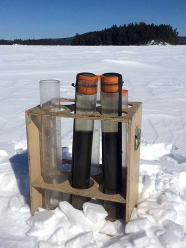Collected sediments from Dickson Lake