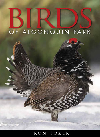 Birds of Algonquin Park cover