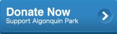 Donate   The Friends of Algonquin Park   Algonquin ... Blue Donate Now Button