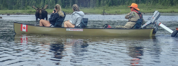 Guided Trips from Algonquin Adventure Tours