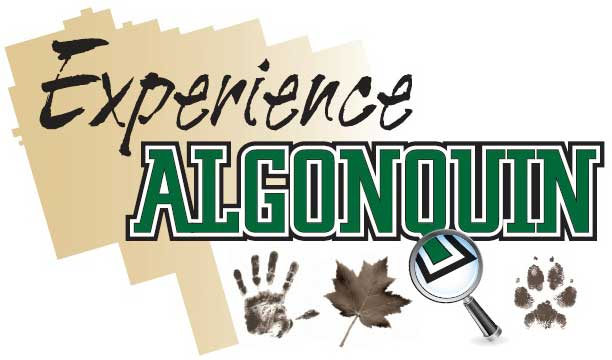 Experience Algonquin Workshops