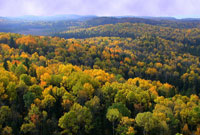 Autumn Colour in Algonquin Park