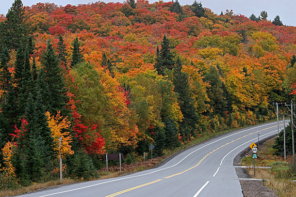 Fall colour at km 16 in Algonquin Park