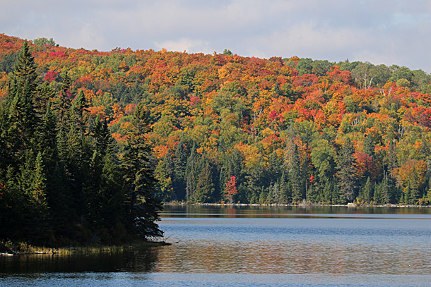View of Brewer Lake in  Algonquin Park on October 6, 2016