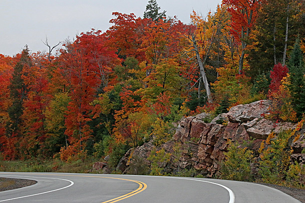 Fall colour in Algonquin Park at km 12 of Highway 60