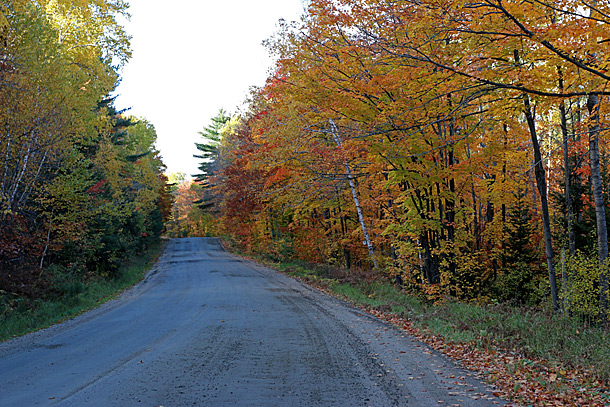 Rock Lake Road in Algonquin Park on October 13, 2016