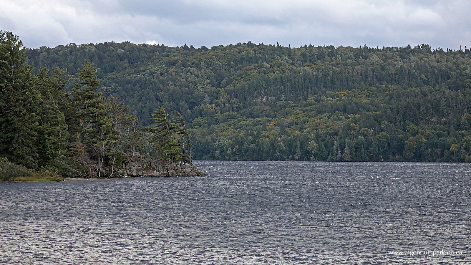 fall colour report algonquin provincial park the friends of Gordon Dam vs Hoover Dam september 21, 2018