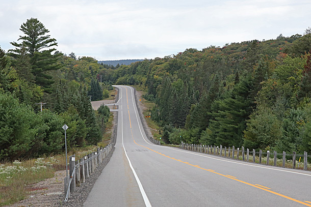 Near Track and Tower Trail (Highway 60 at km 25) in Algonquin Park on September 8, 2020