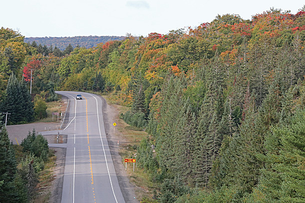 Increasing fall colour at the Track and Tower Trail (km 25) in Algonquin Park on September 14, 2020