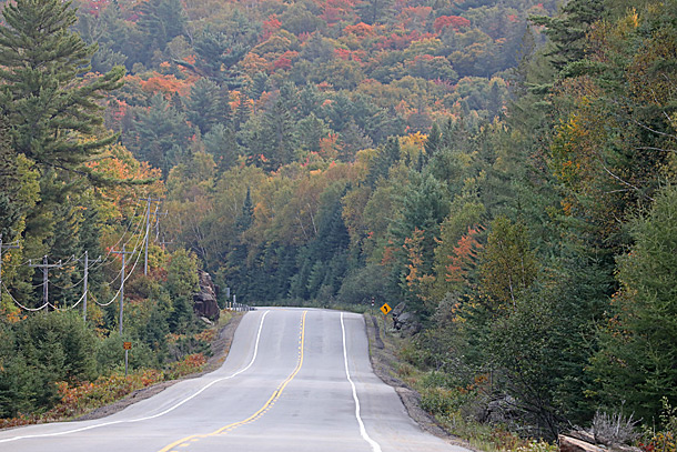 Looking east along Highway 60 at km 5 in Algonquin Park on September 16, 2020