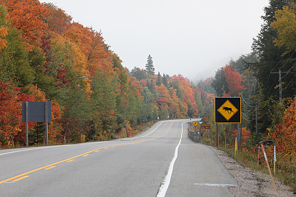 Highway 60 at the West Boundary of Algonquin Park on September 24, 2020