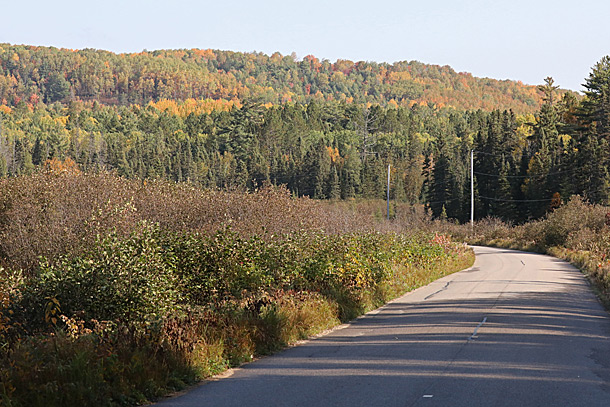 Opeongo Road in Algonquin Park on September 28, 2020