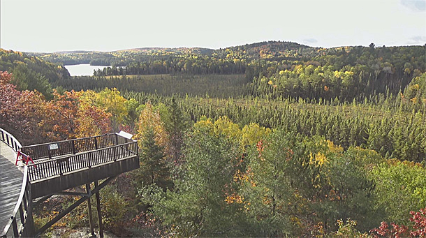 Fall colour as viewed via the Algonquin Park Webcam at the Algonquin Park Visitor Centre on October 1, 2020
