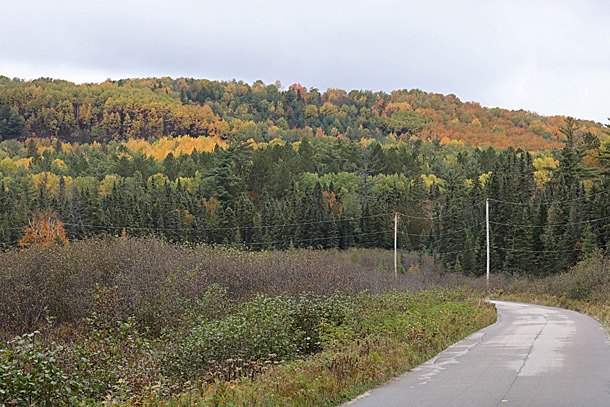 Opeongo Road in Algonquin Park on October 2, 2020