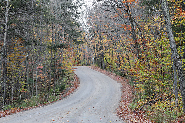 Along the Arowhon Road in Algonquin Park on October 6, 2020