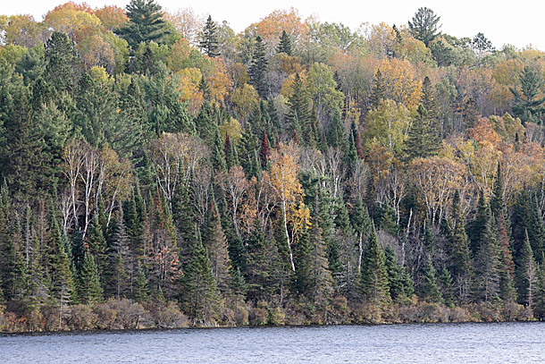 Costello Lake in Algonquin Park on October 6, 2020