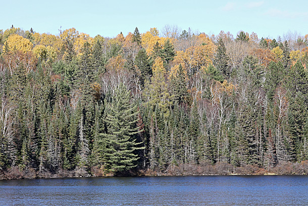Costello Lake in Algonquin Park on October 13, 2020