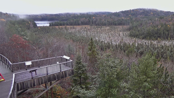 Fall colour at the Algonquin Park Visitor Centre (as seen via the Algonquin Park Webcam) on October 20, 2020