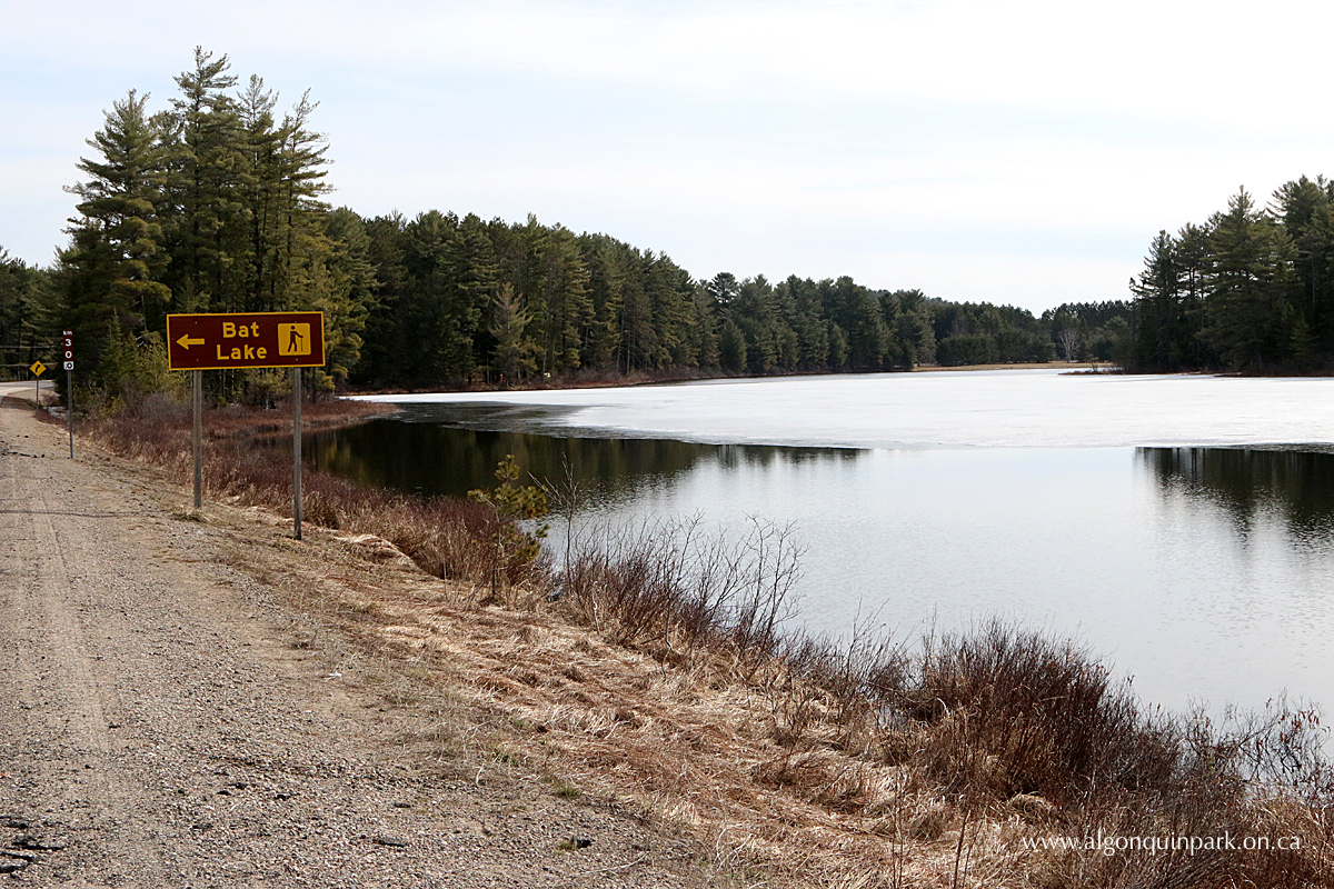Mew Lake in Algonquin Park on April 25, 2016