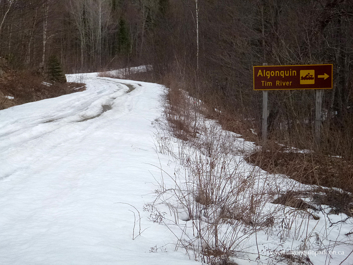 Road into the Tim River Access Point on April 25, 2016