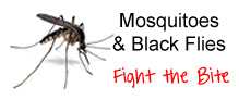 Mosquitoes and Black Flies