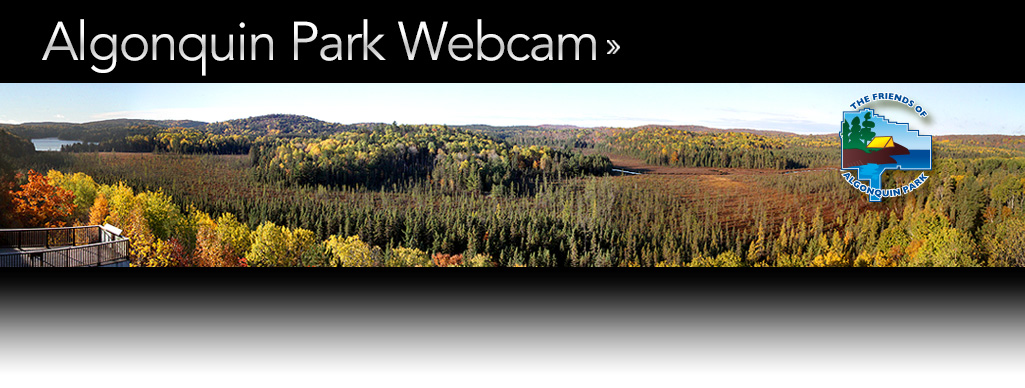 Algonquin Park Webcam - Live Video From Algonquin Park